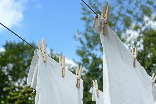 【2018コスタネオロマンチカ旅行記】30.洗濯は最後にまとめて!コスタクルーズのマジックバッグとは